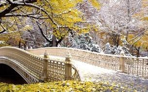 秋のセントラルパークの写真素材 [FYI03126239]