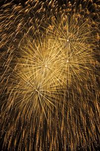 金色一面の花火の写真素材 [FYI03126474]