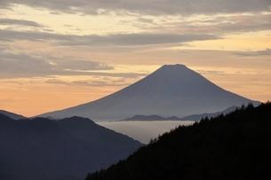 富士山 朝焼けの遠望の写真素材 [FYI03126656]