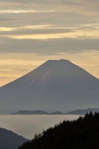富士山 朝焼けの遠望の写真素材 [FYI03126663]