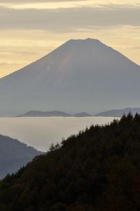 富士山 朝焼けの遠望の写真素材 [FYI03126664]