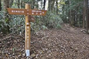 鶏冠山の横手山峠の写真素材 [FYI03126676]