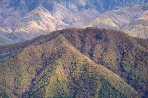 鶏冠山から紅葉の藤尾山を望むの写真素材 [FYI03126689]