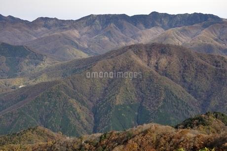 秋の陽射しに紅葉の山並みの写真素材 [FYI03126691]