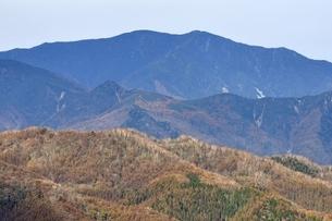 鶏冠山から国師ヶ岳の展望の写真素材 [FYI03126695]