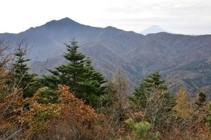 鶏冠山から大菩薩嶺と富士山の遠望の写真素材 [FYI03126697]