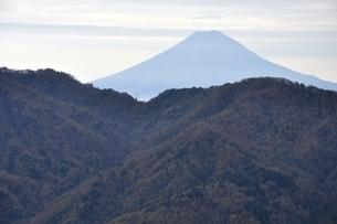 鶏冠山から富士山の遠望の写真素材 [FYI03126698]