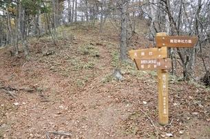鶏冠山への道標の写真素材 [FYI03126710]