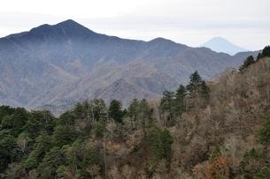 鶏冠山から望む大菩薩嶺と富士山の写真素材 [FYI03126714]