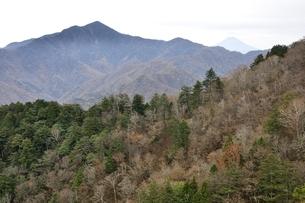 鶏冠山から望む大菩薩嶺と富士山の写真素材 [FYI03126715]