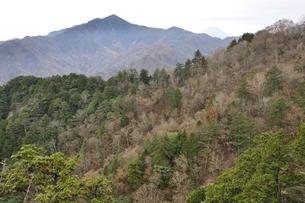 鶏冠山から望む大菩薩嶺と富士山の写真素材 [FYI03126716]