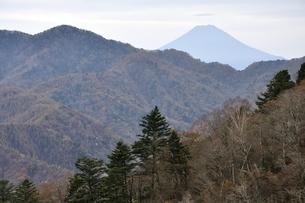 鶏冠山より富士山を望むの写真素材 [FYI03126717]