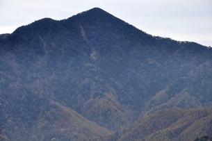鶏冠山より望む日本百名山の大菩薩嶺の写真素材 [FYI03126718]
