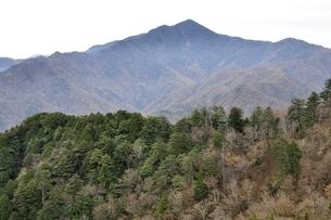 鶏冠山より望む日本百名山の大菩薩嶺の写真素材 [FYI03126722]