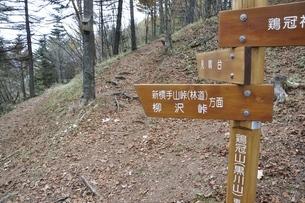 鶏冠山の道標の写真素材 [FYI03126730]