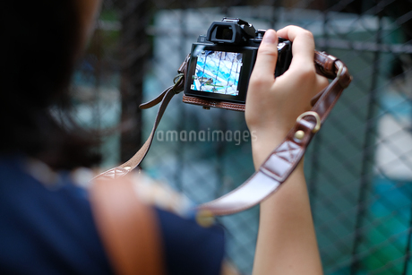カメラマンの写真素材 [FYI03126910]