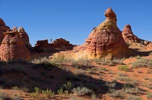 砂漠に林立する砂岩性の岩たちの写真素材 [FYI03126972]