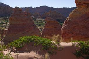 赤岩の林立する荒野と砂丘の写真素材 [FYI03126974]