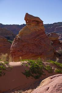 砂漠地帯に広がる赤岩の侵食美の写真素材 [FYI03126976]