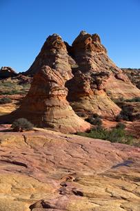 侵食に残り聳える砂岩が林立する荒野の景観の写真素材 [FYI03126987]