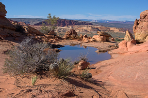 赤い岩や砂で広がる砂漠地帯に見られる水溜りの写真素材 [FYI03127027]