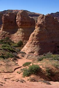 乾燥した荒野に林立する砂岩性堆積岩のビュートの写真素材 [FYI03127029]