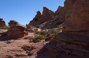 砂漠に林立する赤い砂岩性の堆積岩の写真素材 [FYI03127039]