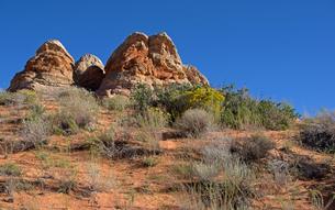 コロラドプラトーの砂漠に広がる岩と植生の景観の写真素材 [FYI03127048]