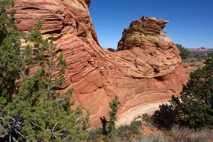 コロラドプラトーに見られる砂岩性堆積岩の隆起が風化で神秘的な形状を見せるの写真素材 [FYI03127101]