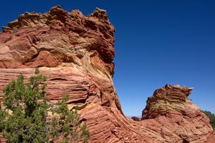 赤い砂が堆積して出来たレッドロックが隆起と侵食で地表を飾るの写真素材 [FYI03127105]