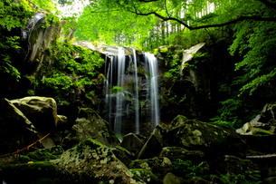赤滝 レッドクリフの滝の写真素材 [FYI03127205]