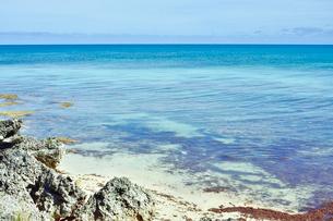 ニューカレドニア ウヴェア島の透き通った青い海と水平線の写真素材 [FYI03127246]