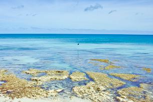 ニューカレドニア ウヴェア島の透き通った青い海と水平線と岩礁と空の写真素材 [FYI03127248]