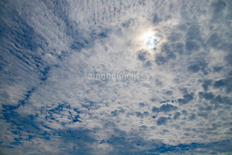 空の写真素材 [FYI03127294]