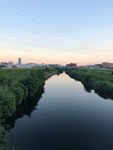 川 グラデーションの空の写真素材 [FYI03127478]