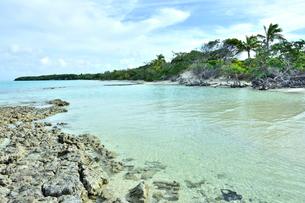 ニューカレドニア ウヴェア島の澄み切った青い海と岩礁と空の写真素材 [FYI03127904]