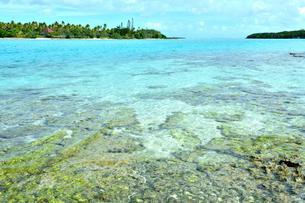 ニューカレドニア ウヴェア島の澄み切った青い海と岩礁と対岸のファヤワ島の写真素材 [FYI03127906]