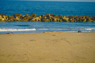 荒浜海岸の砂浜(宮城県仙台市)の写真素材 [FYI03128057]