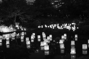 灯篭流しのイメージの写真素材 [FYI03128091]