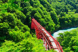 新緑の黒部峡谷鉄道トロッコ電車と清流の写真素材 [FYI03128375]