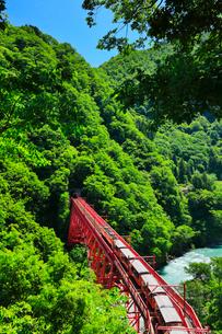 新緑の黒部峡谷鉄道トロッコ電車と清流の写真素材 [FYI03128376]