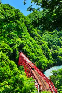 新緑の黒部峡谷鉄道トロッコ電車と清流の写真素材 [FYI03128377]