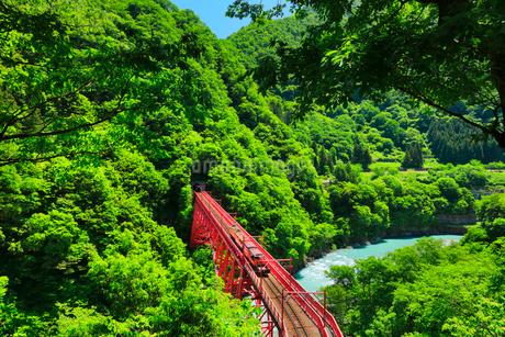新緑の黒部峡谷鉄道トロッコ電車と清流の写真素材 [FYI03128378]