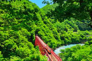 新緑の黒部峡谷鉄道トロッコ電車と清流の写真素材 [FYI03128380]