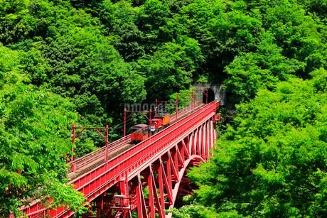 新緑の黒部峡谷鉄道トロッコ電車の写真素材 [FYI03128391]