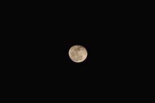 夜の月の写真素材 [FYI03128432]