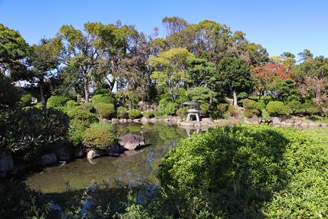 大阪城の庭園の写真素材 [FYI03128459]