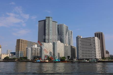 東京ベイエリアの写真素材 [FYI03128501]