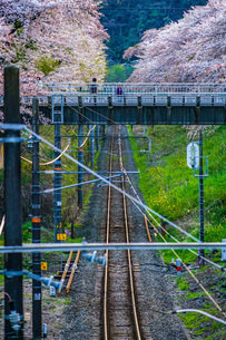 春の山北駅(神奈川県足柄上郡)の写真素材 [FYI03128612]