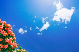粉粧楼とわた雲の写真素材 [FYI03128791]